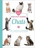 Editions 365 - Mon petit agenda Chats - Du 1er janvier au 31 décembre.