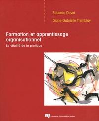 Eduardo Davel et Diane-Gabrielle Tremblay - Formation et apprentissage organisationnel - La vitalité de la pratique.