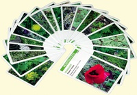 Malherbocartes - Jeu de reconnaissance des plantes adventices des cultures.pdf