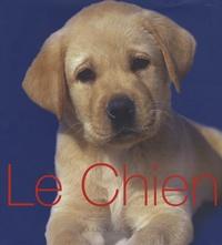 Ucareoutplacement.be Le Chien - Guide des animaux Image