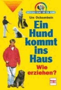 Ein Hund kommt ins Haus - Wie erziehen?.