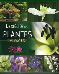 Elcy - Lexiguide des plantes vivaces.
