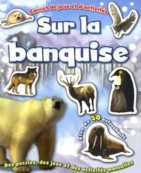 Elcy - Sur la banquise - Des puzzles, des jeux et des activités manuelles.