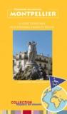 Elian Revel - Montpellier - Le guide touristique pour personnes à mobilité réduite.