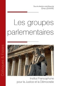 Les groupes parlementaires - Elina Lemaire |
