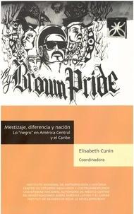 """Elisabeth Cunin - Mestizaje, diferencia y nación - Lo """"""""negro"""""""" en América Central y el Caribe."""