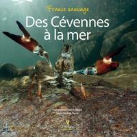 Elisabeth Mauris - Des Cévennes à la mer.