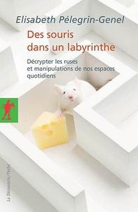 Elisabeth Pélegrin-Genel - Des souris dans un labyrinthe - Décrypter les ruses et manipulations de nos espaces quotidiens.