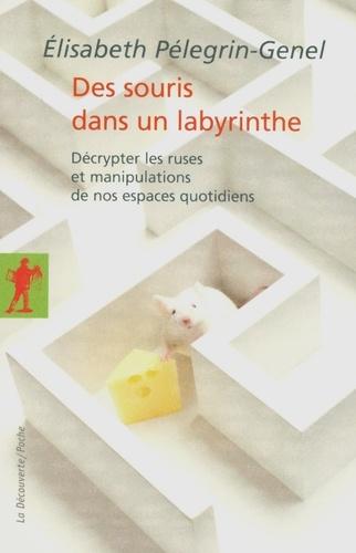 Des souris dans un labyrinthe. Décrypter les ruses et manipulations de nos espaces quotidiens