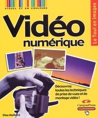 Elise Maillard - Vidéo numérique.
