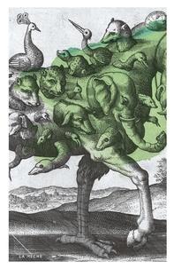 Elise Turcotte - Autobiographie de l'esprit.