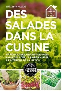 Télécharger des livres sur Google pour allumer Des salades dans la cuisine (French Edition) MOBI 5552501120152