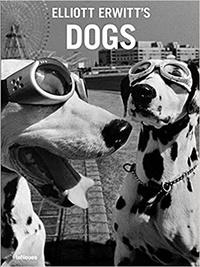 Elliott Erwitt - Dogs.
