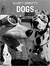 Elliott Erwitt - Elliott Erwitt's Dogs.