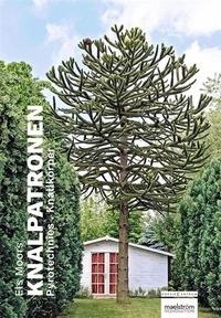 Els Moors - Knalpatronen - Pyrotechnies, édition français-néerlandais-allemand.