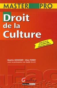 Elsa Forey et Sophie Monnier - Droit de la culture - A jour de la loi du 15 juillet 2008 relative aux archives.
