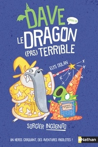 Elys Dolan - Dave le dragon (pas) terrible  : Sorcier incognito.