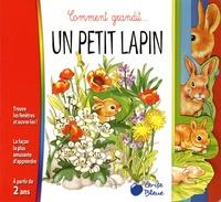 Emanuela Bussolati - Un petit lapin.