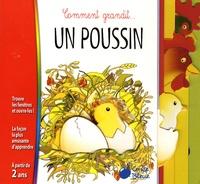 Emanuela Bussolati - Un poussin.