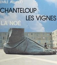 Emile Aillaud et Gilles Aillaud - Chanteloup les vignes - Quartier La Noé, architecte : Émile Aillaud.