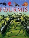 Emilie Beaumont et Sabine Boccador - Les fourmis.