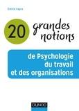 Emilie Vayre - 20 grandes notions de psychologie du travail et des organisations.