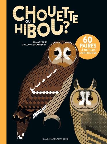 Différence Entre Chouette Et Hibou