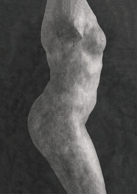 Emmanuel Berry et Hélène Pinet - Rodin.