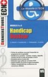 Emmanuel Graive et Patricia Alexeline - Handicap Douleur - Modules 4 & 6.