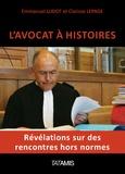 Emmanuel Ludot et Clarisse Lepage - L'avocat à histoires.