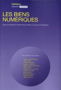 Emmanuel Netter et Aurore Chaigneau - Les biens numériques.