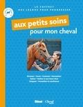 Emmanuelle Brengard - Coffret Aux petits soins pour mon cheval - Avoir un cheval à soi ; Je prends soin de mon cheval.