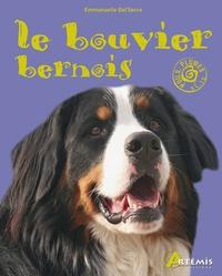 Rhonealpesinfo.fr Le bouvier bernois Image
