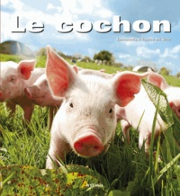 Emmanuelle Dal'Secco - Le cochon.