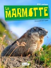 Emmanuelle Kecir-Lepetit - La marmotte.