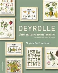 Emmanuelle Polle - Deyrolle, une nature nourricière - 21 planches à encadrer.