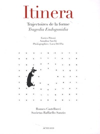 Enrico Pitozzi et Annalisa Sacchi - Itinera - Trajectoires de la forme - Tragedia Endogonidia.