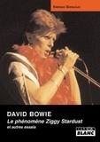 Enrique Seknadje - David Bowie - Le phénomène Ziggy Stardust et autres essais.