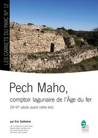 Eric Gailledrat - Pech Maho - comptoir lagunaire de l'Age du fer.