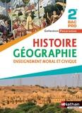Eric Godeau et Dominique Delmas - Histoire-géographie, Enseignement moral et civique 2e Bac Pro Panoramas.