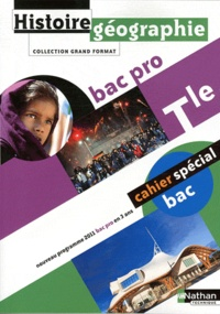 Eric Godeau - Histoire-Géographie Tle Bac pro - Programme 2009.