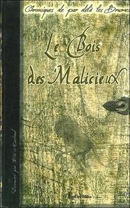 Eric Marchand - Chroniques de par delà les brumes Tome 1 : Le Bois des Malicieux.