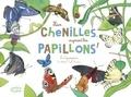 Eric Mathivet et Emilie Vanvolsem - Hier chenilles, aujourd'hui papillons ! - Les lépidoptères.