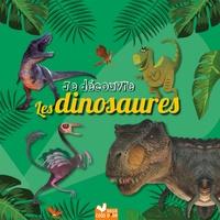 Eric Mathivet - Je découvre les dinosaures - coffret avec lampe magique.