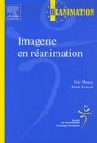 Eric Maury et Alain Mercat - Imagerie en réanimation.