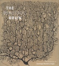 Eric Newman et Alphonse Araque - The Beautiful Brain - The Drawings of Santiago Ramon y Cajal.
