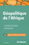 Eric Nguyen - Géopolitique de l'Afrique - Du continent noir oublié à la renaissance africaine.