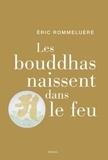 Eric Rommeluère - Les bouddhas naissent dans le feu.