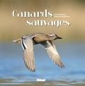 Erwan Balança et Matthieu Guillemain - Canards sauvages.