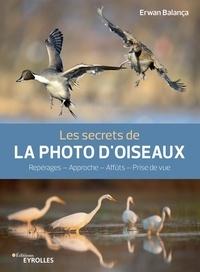 Erwan Balança - Les secrets de la photo d'oiseaux.